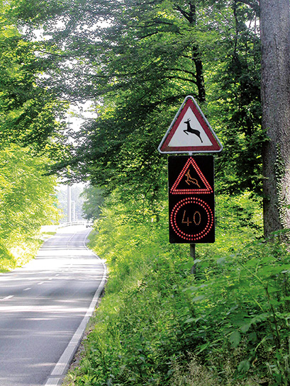 Route et gibier, quelles mesures?